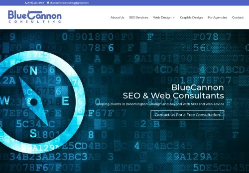Bluecannon Consulting