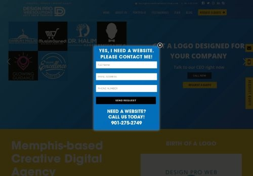 Design Pro Web Solutions LLC